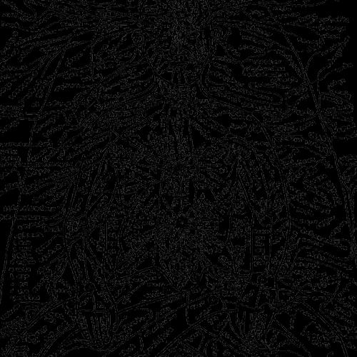 nadis-detail